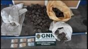 Grândola – GNR deteve 3 homens por furto de 84 quilos de pinha mansa