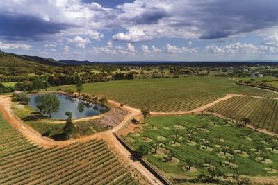 Portalegre: Symington lança novo Centro de enoturismo na Quinta da Fonte Souto