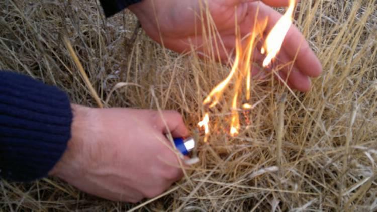 GNR regista crime de incêndio em Estremoz, esta quarta-feira (c/som)