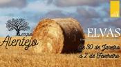 Elvas:Conheça ao detalhe o Programa da Expo Alentejo