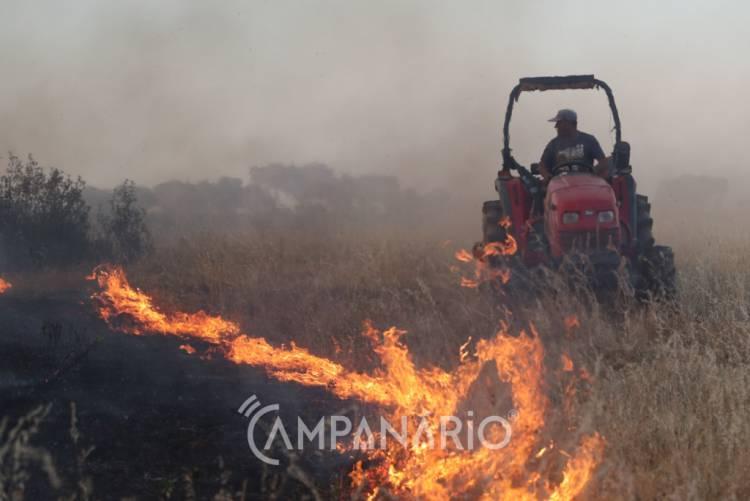 Incêndio em Terrugem mobiliza 4 dezenas de operacionais