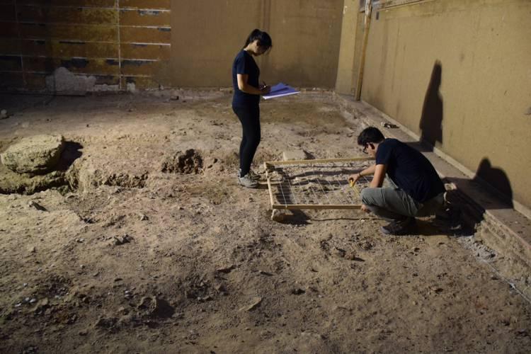 Câmara Municipal e Universidade de Évora fazem sondagens arqueológicas no antigo edifício do Salão Central Eborense