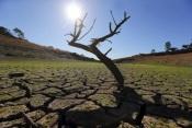 Portugal continental regista aumento da seca meteorológica em junho