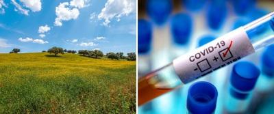 COVID-19/Dados DGS: Alentejo com mais uma morte e um infetado. Reguengos de Monsaraz e Moura são os concelhos mais infetados