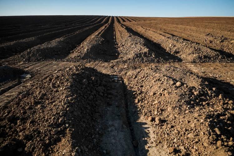 Direção Regional de Cultura preocupada com destruição do património arqueológico no Alentejo