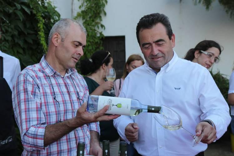 """Reguengos de Monsaraz lança marca de vinho como """"forma promover o território"""", diz autarca José Calixto (c/som)"""