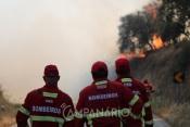 """""""O exército não sabe apagar fogos, não têm de estar na linha da frente, quem sabe fazer o combate são os bombeiros"""" diz Jaime Marta Soares (c/som)"""