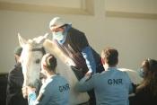 GNR de Évora abre inscrições para hipoterapia para Associações com utentes portadores de deficiência