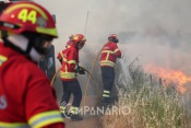 Incêndio em Montemor-o-Novo mobiliza 45 operacionais e 1 meio aéreo