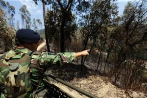 Novo reforço de militares ajuda na prevenção de incêndios no Alentejo