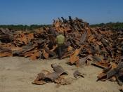 Mora: GNR de Estremoz sensibiliza produtores da região para o furto de cortiça(c/fotos)