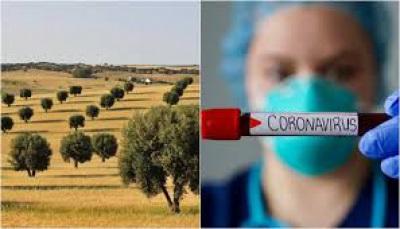 COVID-19: 63 casos de infeção no Alentejo