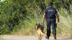 Homem de 60 anos desaparecido no Alto Alentejo