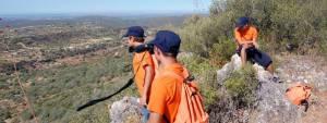 Alentejo: IPDJ abre candidaturas para programa de voluntariado jovem nas florestas (c/som)