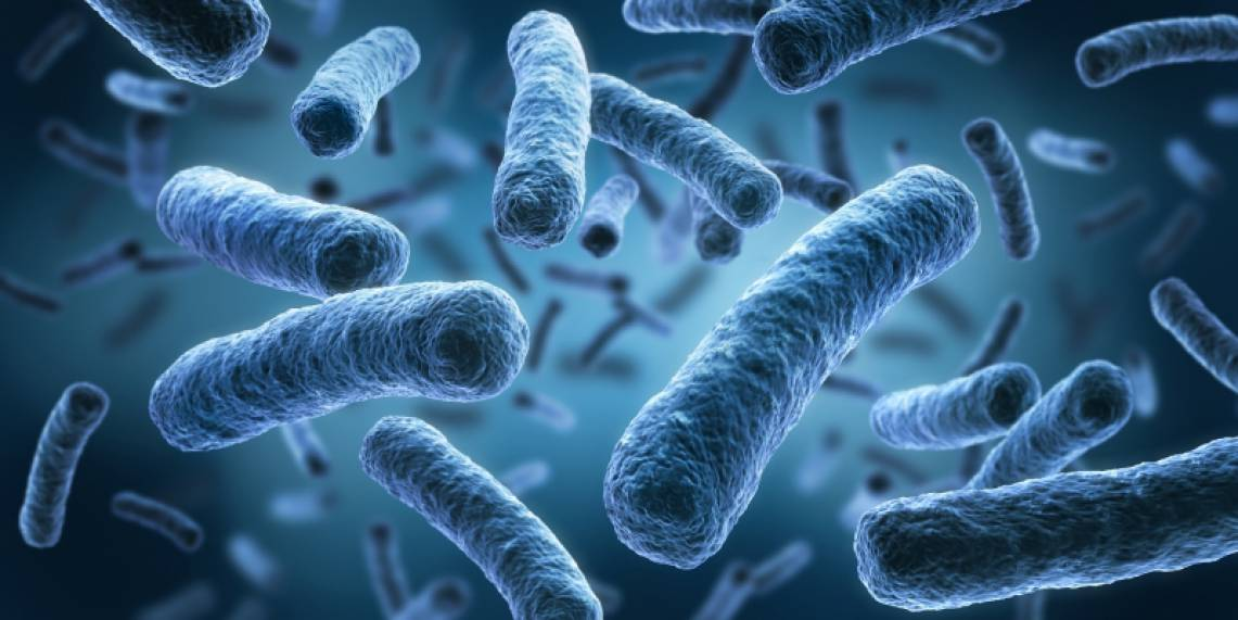 Legionella detectada na EB 2,3 de Ourique