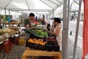 Mercado Municipal de Castro Verde Dia 02 Dezembro Cancelado Por Medidas de Precaução
