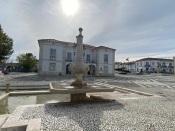 Covid 19: Executivo e funcionários da Câmara Municipal de Redondo testados por fases