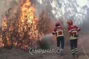 Mais de 5 dezenas de bombeiros e 1 meio aéreo combatem chamas em Évora,  junto à EN 18
