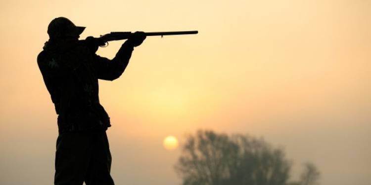 Três homens detidos por caça ilegal no Baixo Alentejo
