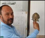 GNR de Évora recolhe e entrega ao ICNF ave de rapina