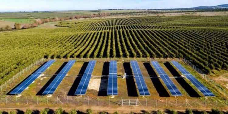 Projeto europeu de soluções de irrigação fotovoltaica desenvolvido no Alentejo