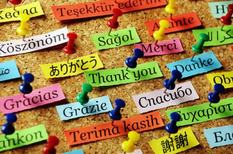 IPP promove cursos de línguas em Estremoz para todas as idades