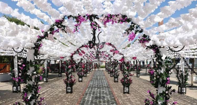 Jardim mais colorido do mundo regressa a Campo Maior a partir deste fim de semana (c/programa)