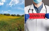 O Alentejo mostra sinais de alivio - hoje regista apenas 5 novos casos de Covid 19