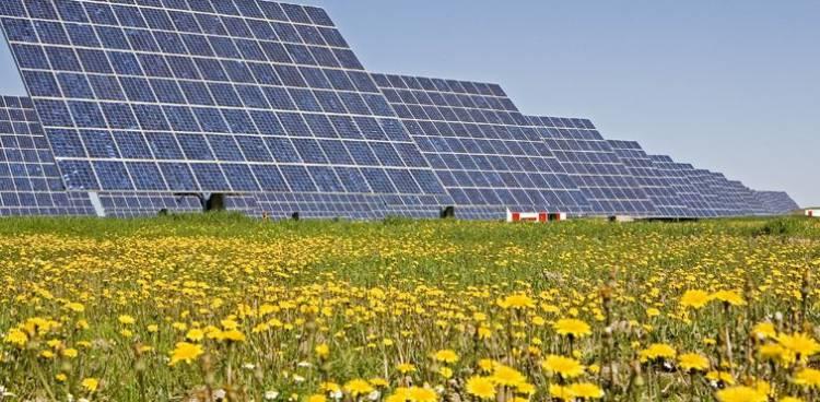 Revolução Solar investirá centenas de milhões de euros no Alentejo