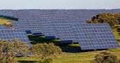 Alentejo: Empresa espanhola investe 23 M€ em parques solares em Arraiolos, Alandroal e Elvas