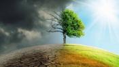 """CIMAC promove Mesa Redonda online- """"Soluções Baseadas na Natureza: Alterações Climáticas e Governança"""""""