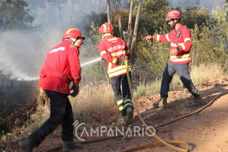 3 dezenas de bombeiros combatem incêndio no concelho de Évora