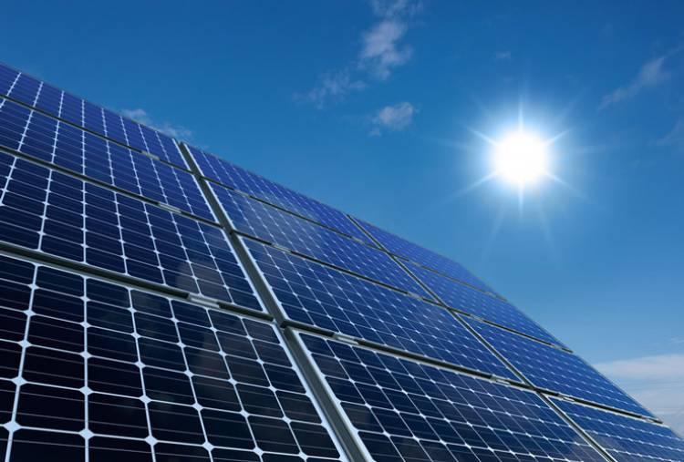 REN propõe investimento de 70 milhões de euros em centrais fotovoltaicas no Alentejo