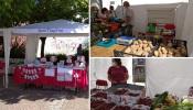Aljustrel: Decorre até às 13 horas o mercado local de pequenos produtores do concelho