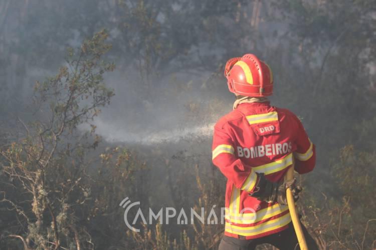3 dezenas de bombeiros combatem incêndio em Sousel