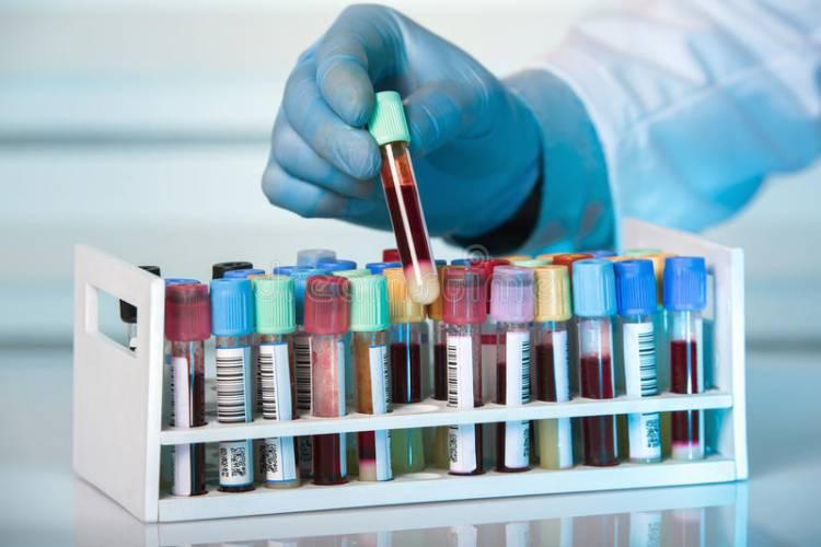 Portalegre: Laboratório da ARS Alentejo encerrado por ato de vandalismo de seis menores de idade