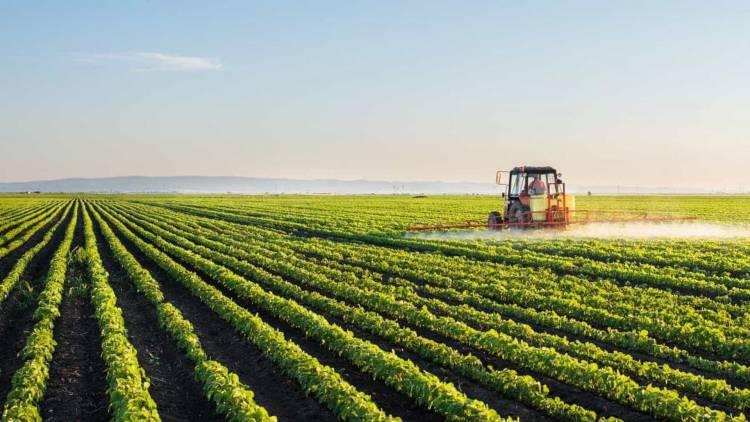 Centros de Investigação do Alentejo e Algarve criam unidade em ambiente e agricultura