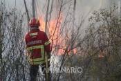 Três incêndios no distrito de Évora mobilizaram esta tarde mais de 60 Bombeiros