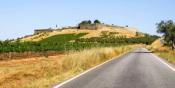 Covid 19: Portugal regista 241 surtos ativos, 13 deles no Alentejo