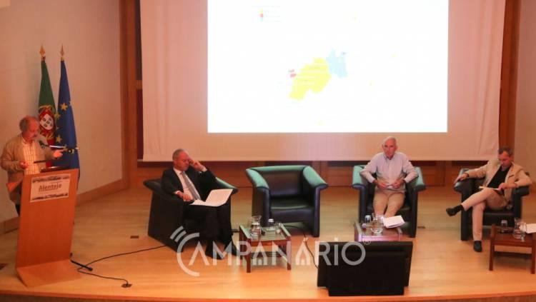 """Plataforma Alentejo reivindica """"malha ferroviária e rodoviária que satisfaça as necessidades do Alentejo"""", diz responsável. A RC mostra-lhe as fotos (c/som)"""
