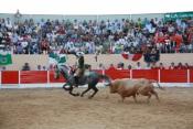 15 Municípios Alentejanos integram grupo de autarquias contra alteração da idade para assistir a touradas!
