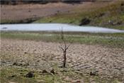 Baixo Alentejo Aprova Candidatura para Projetos de Adaptação às Alterações Climáticas nos Municípios
