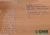 Sines: GNR detém homem por tráfico de estupefacientes e apreenderam cerca de 2 mil doses de droga
