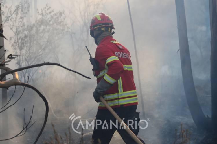 Incêndio no Baixo Alentejo mobiliza 2 dezenas de operacionais