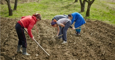 Alentejo: aumenta número de jovens agricultores. Há mais mulheres neste setor.