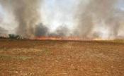 Gavião e Nisa em risco máximo de incêndio esta sexta-feira