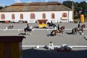 Coudelaria de Alter  do Chão volta à ribalta dos grandes eventos equestres