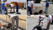 Município de Sousel está a efetuar controlo de pragas em todo o concelho