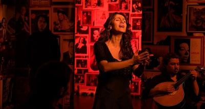 O Fado vai a sua casa! Município de Sines organiza 8 noites musicais para desfrutar online