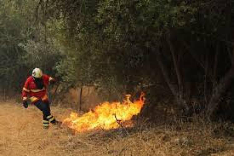 O IPMA colocou hoje em risco muito elevado de  incêndio o concelho de Gavião no distrito de Portalegre.